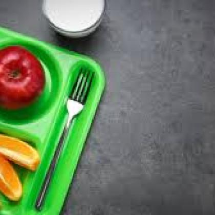School Meal on Green Tray